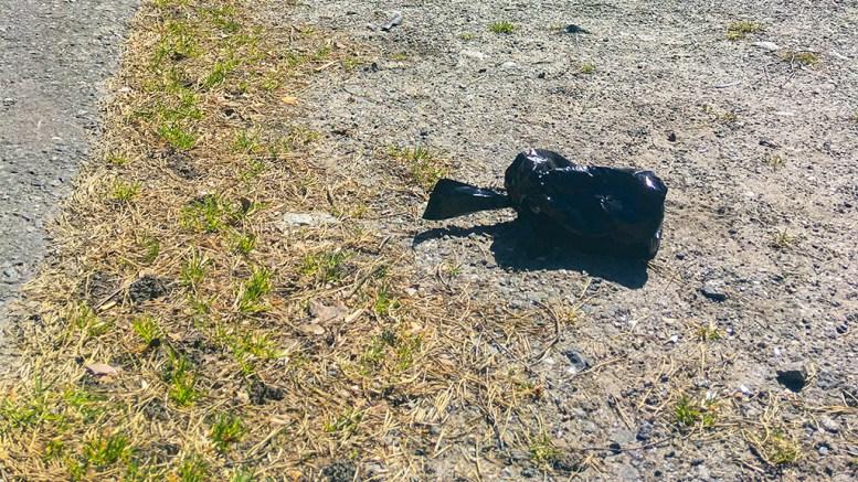 SØPPELDUGNAD: Også på søppelfronten er det behov for en dugnad. Ikke bare sleng dritten fra deg, slik som denne posen ved Strandhuset på Hove er et godt eksempel på. Foto: Esben Holm Eskelund