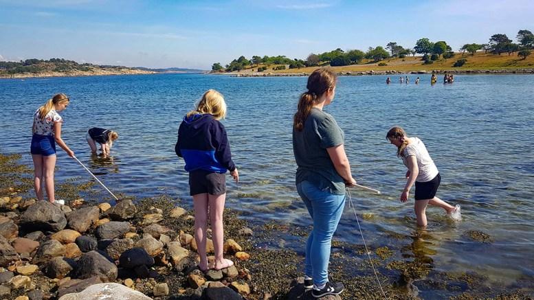 AKTIVITETSDAG: Tromøy Fritidsforum samlet alle de påtroppende ungdomsskoleelevene på Tromøy til felles tur. Foto: Isak Knutsen