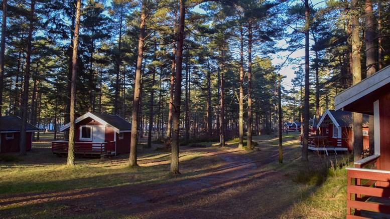 REGULERINGSPLAN: Et forslag fra kommunen til regulering på campingområdet på Hove legges ikke frem i år. Arkivfoto