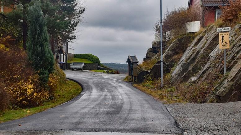 VEIPRIVATISERING: Sparkveien på Tromøy er et eksempel på en vei i et boligfelt, som kommunen har privatisert. Bystyret avviste torsdag å legge til rette for at enda flere eksisterende veier blir overført fra kommunen til de som bor langs veiene. Arkivfoto