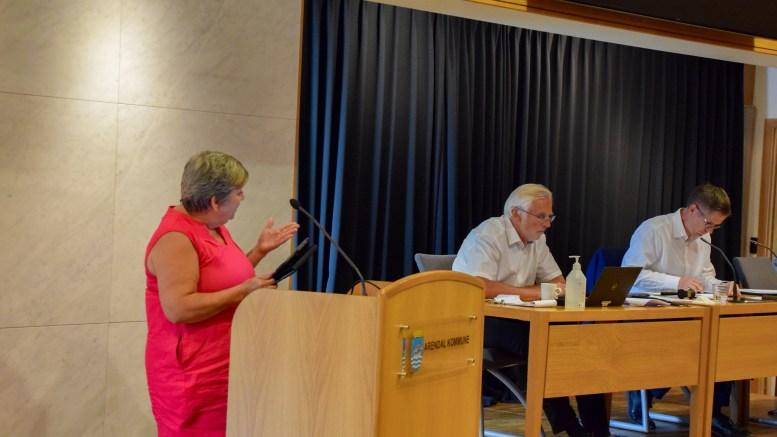 INGEN TILLIT: – Rådmannen sier han har tillit til styret i HDU, det har ikke vi i Pensjonistpartiet, skriver bystyrerepresentant Ingebjørg Godskesen. Arkivfoto