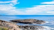 HVIDDINGSEIVA: Holme tett på land på utsiden av Øyna. Foto: Esben Holm Eskelund