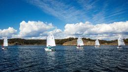 NORDISK MESTERSKAP: Fem optimistseilere fra Tromøy deltar i nordisk mesterskap. Det er første gang siden 2015 at ASF deltar i dette mesterskapet. Foto: Arendals seilforening