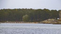 HOVE-BRYGGA: Nasjonalparkstyret vedtok å ikke ta klagen fra Naturvernforbundet til følge og sender saken til Miljødirektoratet. Arkivfoto
