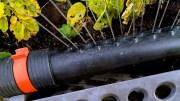 VANNINGSFORBUD: Arendal kommune innfører vanningsforbud i forbindelse med reparasjon. Sommervannet stenges fra mandag til fredag. Illustrasjonsfoto