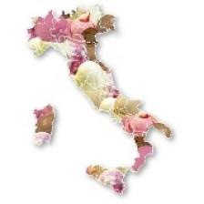 italia gelaterie