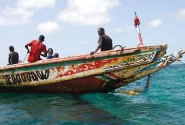 Barcos africanos coloridos agora são móveis