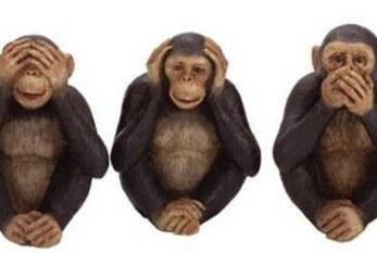 Nosso futebol racista ou os macacos de si mesmos – por Marcos Souza