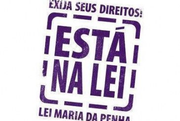 STJ regride Lei Maria da Penha