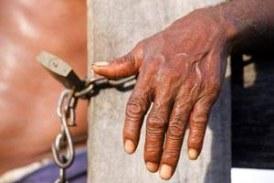 Escravidão persiste no Brasil: 283 pessoas libertas somente em 2013