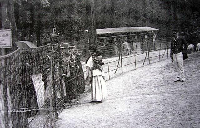 Zoológico Humanos - Escravidão