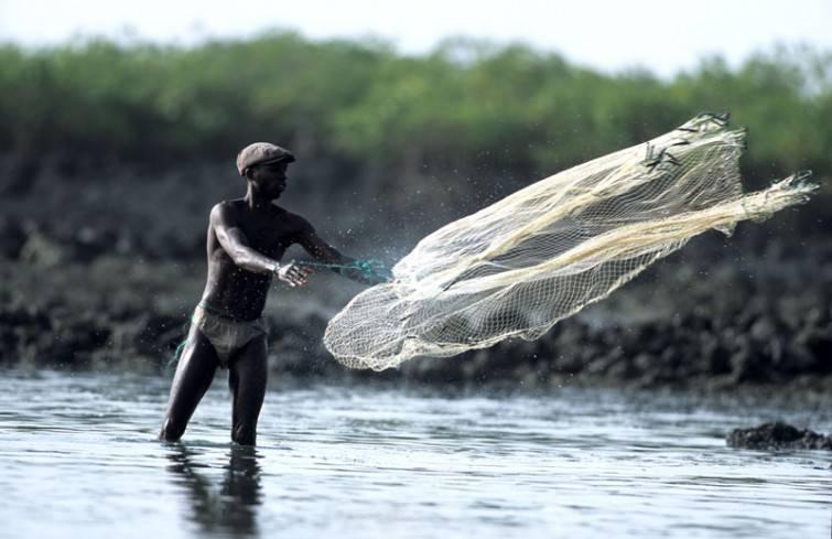 Guiné-Bissau052