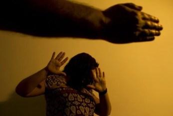 Seminário internacional Brasil/EUA debate violência contra mulher