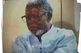 Kabengele Munanga, professor