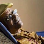 Aos 75 anos, Nei Lopes lança 'Dicionário de História da África'