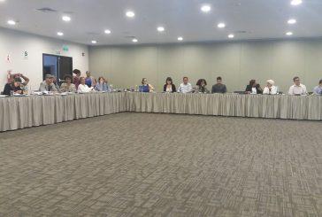 VIII Cúpula das Américas - Coalisão Afrodescendente - abril 2018 Lima - Peru