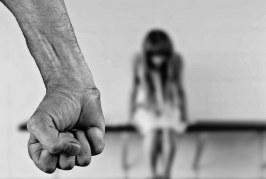 Os novos crimes sexuais, por Silvia Chakian de Toledo Santos