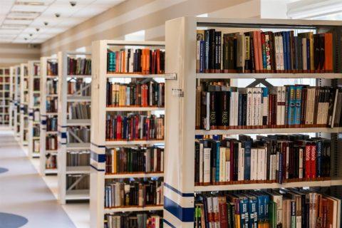 Imagem de uma biblioteca com inúmeras estantes com livros