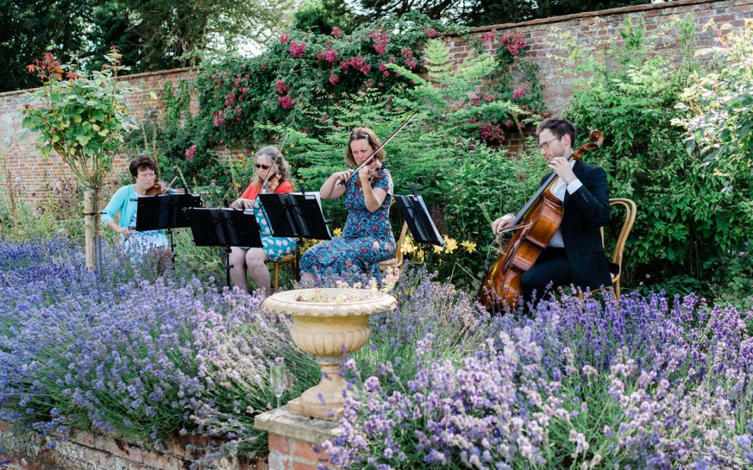 An interview with a wedding string quartet