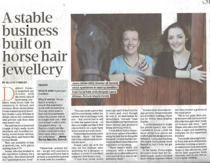 Gemosi in the Sunday Business Post