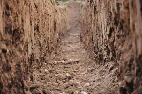 Erde für Balkongemüse