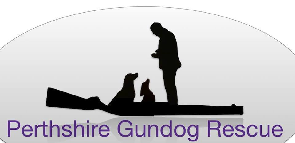 perthshire-gundog-rescue
