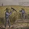 Actualité genealogie Decembre 2018 - La condition des domestiques de ferme au temps d'Aubin Denizet