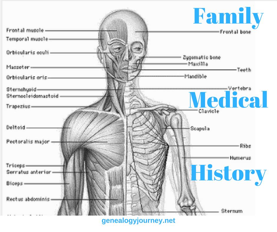 family-medical-history