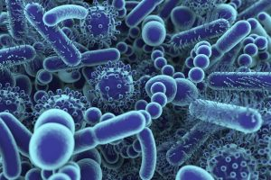 Tumor Cell Bacteria May Explain Microbiome-Immunotherapy Linkage