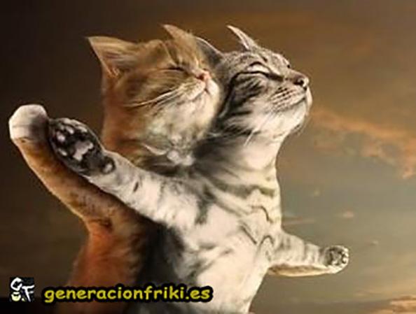 312) 10-04-14 Titanic-gatos-Humor