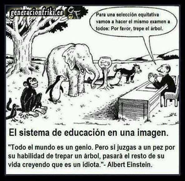 423) 21-05-14 sistema-educacion-trepa-arbol-Humor