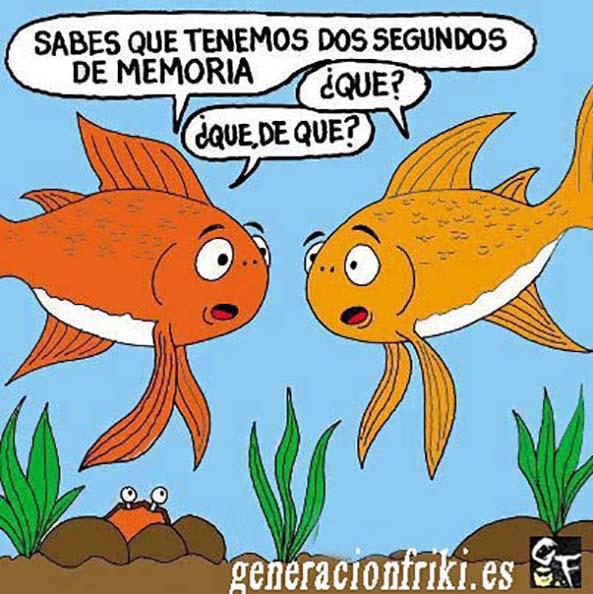 448) 28-05-14 peces-nemo-Humor
