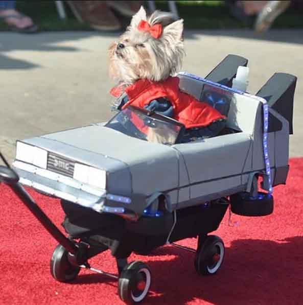 8-Perro-Marty-McFly-Regreso-al-futuro-8