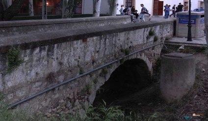 La-desaparicion-de-Alma-cronica-Ambiente-1