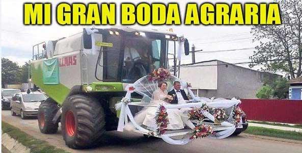 1293-30-05-16-gran-boda-agraria-humor