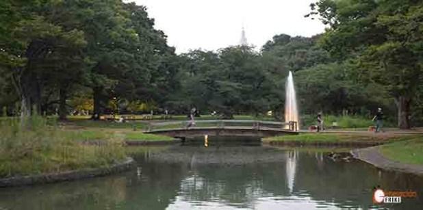 generacion-friki-en-japon-parque-yoyogi-portada