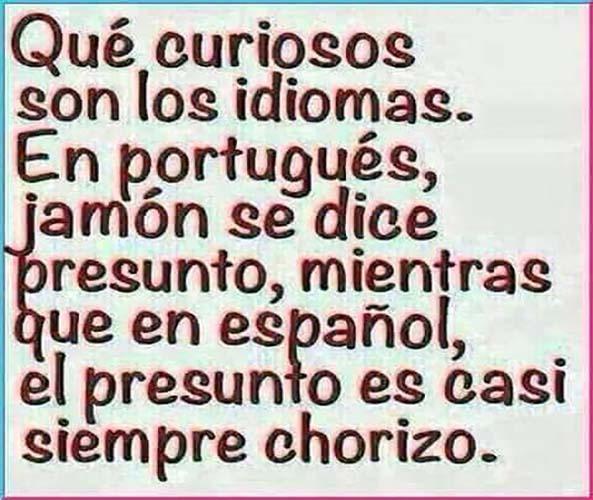 1335) 15-07-16 presunto-chorizo-Humor