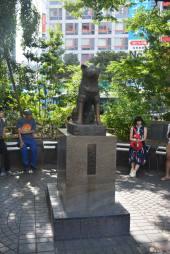 itinerario-japon-para-frikis-otakus-15-días-parte-1-generacion-friki-shibuya-2