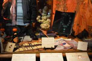 16-Harry-Potter-Exhibition-Exposicion-Madrid-Gryffindor