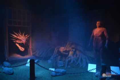 42-Harry-Potter-Exhibition-Exposicion-Madrid-bosque