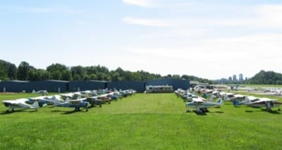 Field of Shortwings