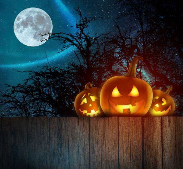 Quello che non Sapete Su di Halloween