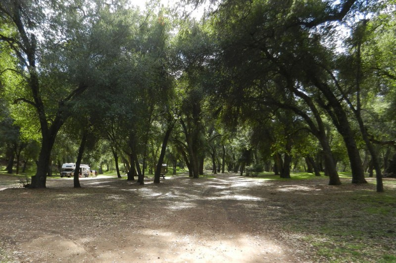 Aliso Campground, California