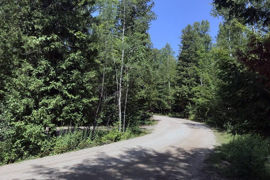 Generic-Van-Life-Camping-Spot-Magregor-Point-Provincial-Park-Ontario-Road