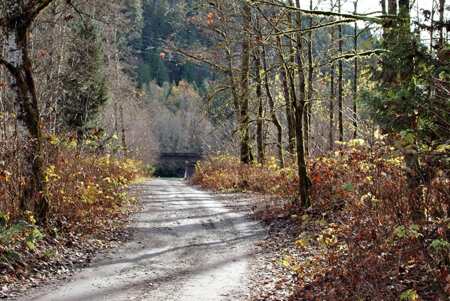 Generic-Van-Life-Camping-Spot-Squamish-Riverside-British-Columbia-Road