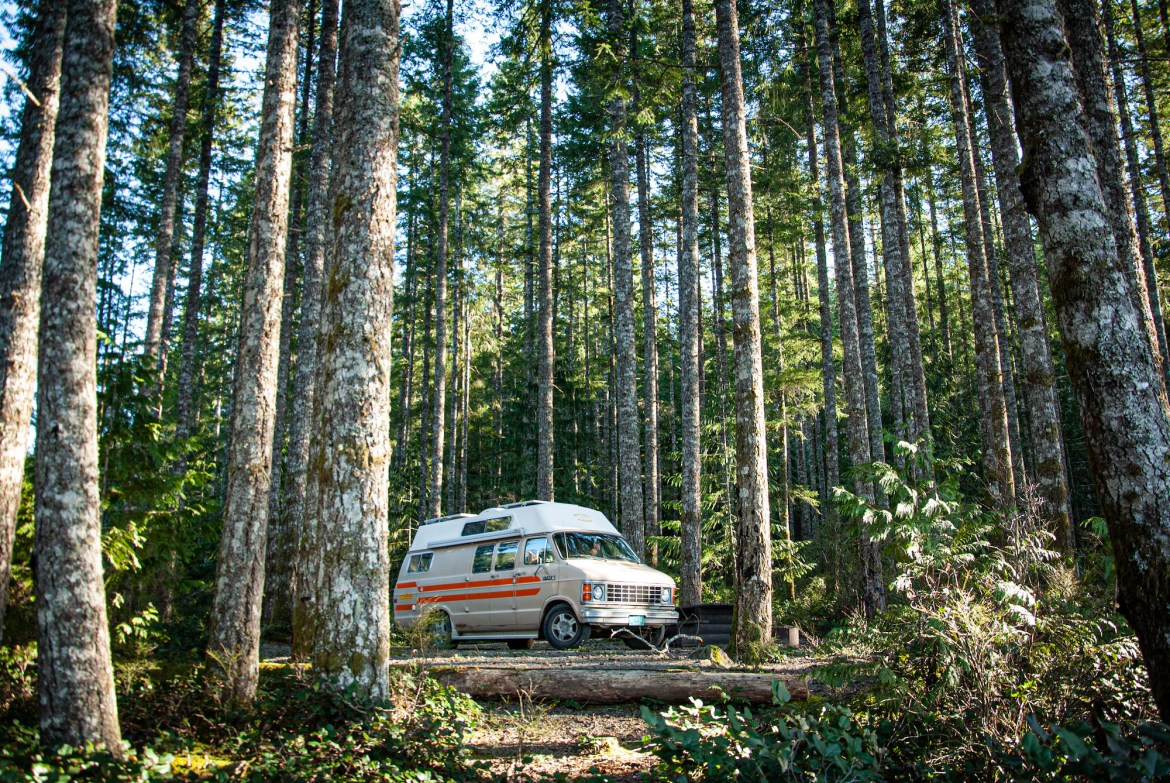 Generic Van Life - Pandemic Van Life - Alone in the Woods