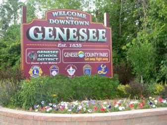 Welcome to Downtown Genesee