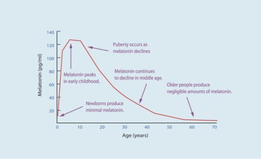 chart showing steep decrease in melatonin as we age