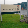Anti-GMO activist attacks Monsanto research center in Italy with 'bottle bombs'