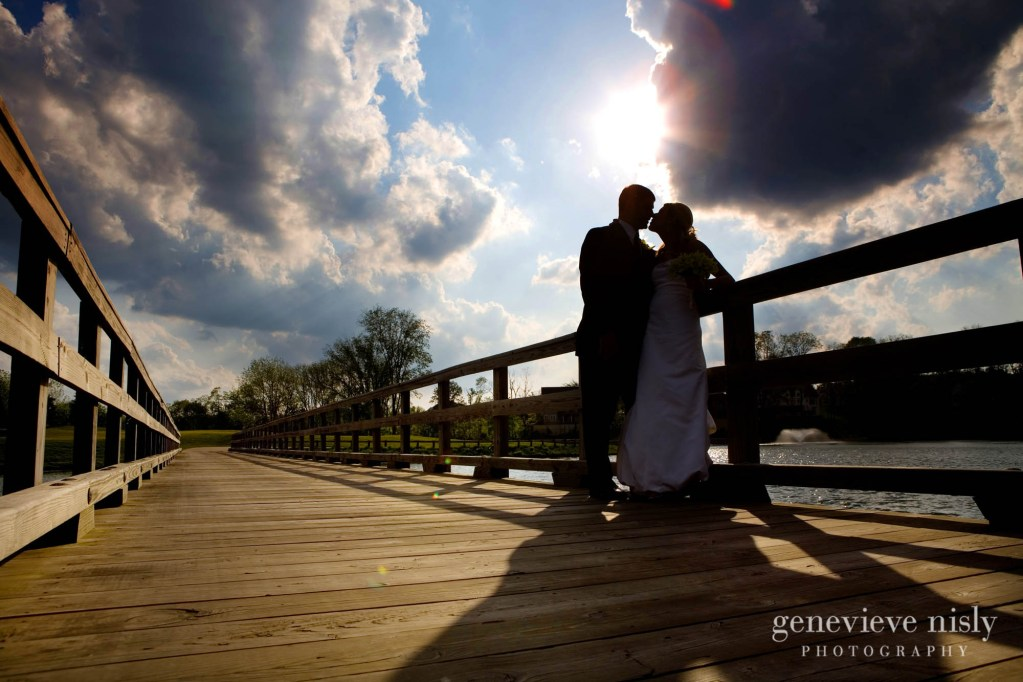 Akron, Blue Heron, Copyright Genevieve Nisly Photography, Ohio, Wedding